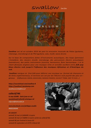bio du groupe Swallow, free electric folk